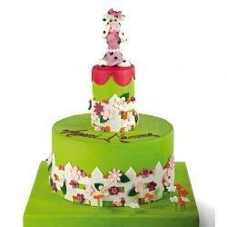 EventMamma 250x250 - Event Cake
